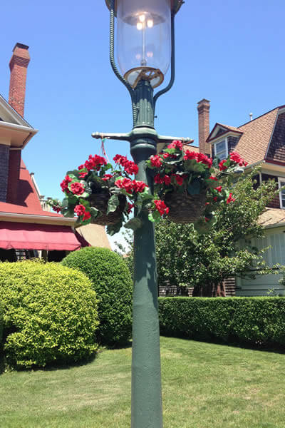 Victorian gas light with two hanging red geraniums and green landscaping